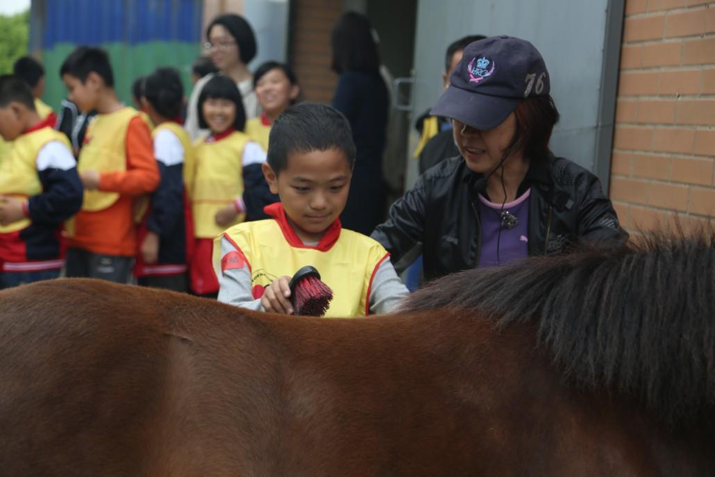 学生与马互动
